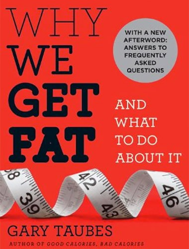 Why We Get Fat Image