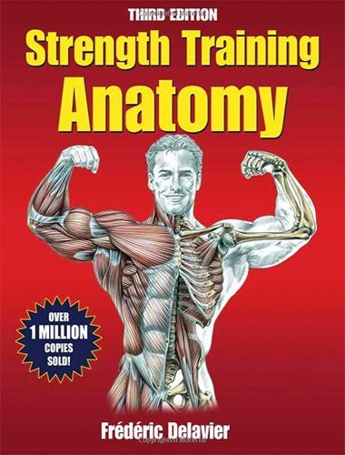 Strength Training Anatomy Image