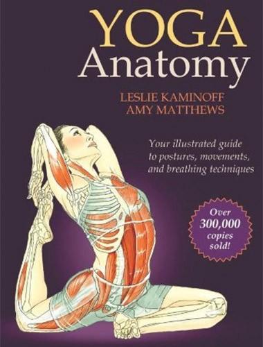 Yoga Anatomy Image